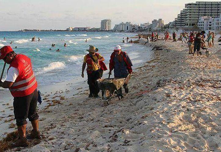 La limpieza diaria se realiza en todas las playas públicas de Cancún. (Redacción/SIPSE)