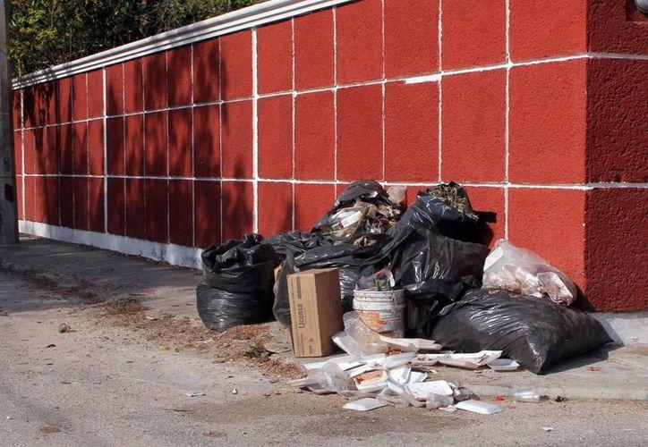 La gente sigue sacando basura y cacharros a la vía pública. (Milenio Novedades)