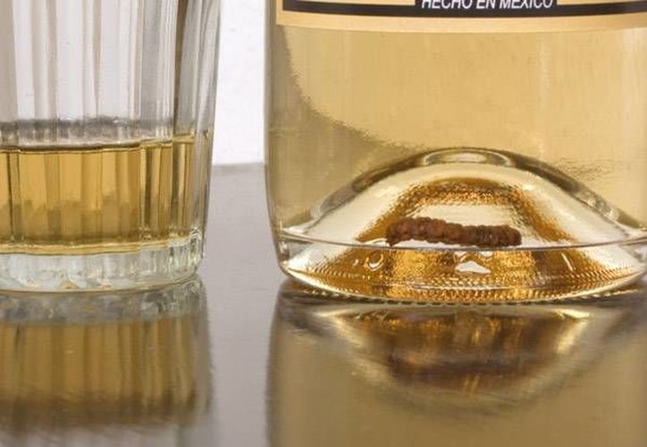 Aseguran que sólo les faltan los permisos para poder producir sin problema la bebida y posteriormente comercializarla. (laninadelmezcal.com)