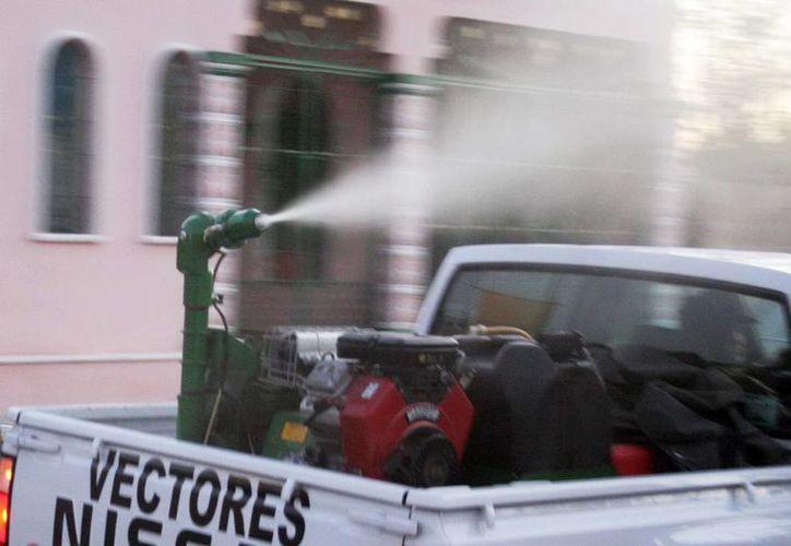 Afirman que la fumigación no daña al ser humano ni mascotas. Imagen de un vehículo de la Secretaría de Salud que fumiga en las colonias. (Milenio Novedades)
