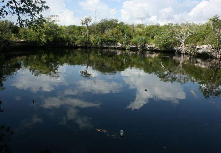 Impulsarán  el cuidado de los recursos naturales del municipio. (Adrián Barreto/SIPSE)