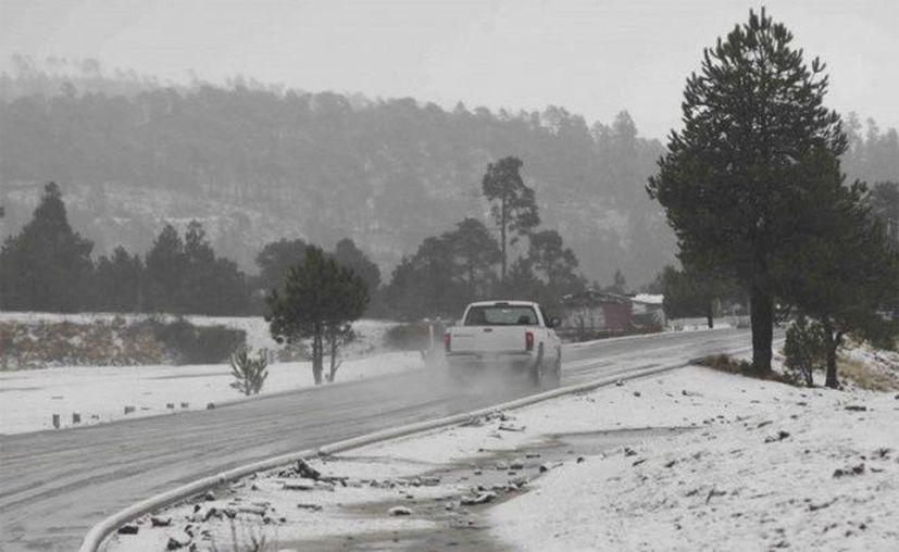 La Conagua registró otras temperaturas congelantes, como en Tepehuanes, con menos 5.5 grados. (Notimex)