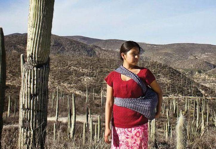 El largometraje mexicano 'La Tirisia' obtuvo el premio CMCAS y el Rail d'oc en el Festival de Cine de Toulouse. (cinelatino.com.fr)