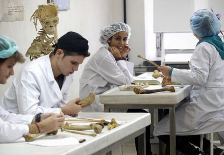 El reto que enfrentan los jóvenes médicos es la especialización. (El País)