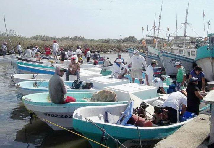 Los cierres de puertos afectan económicamente a los pescadores de Yucatán. (SIPSE)
