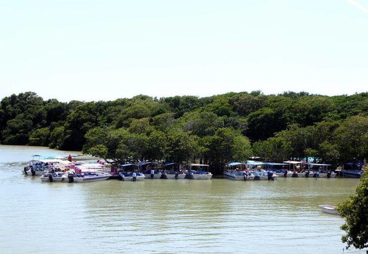 La Ría de Celestún es uno de los atractivos más buscados por el turista. (Milenio Novedades)