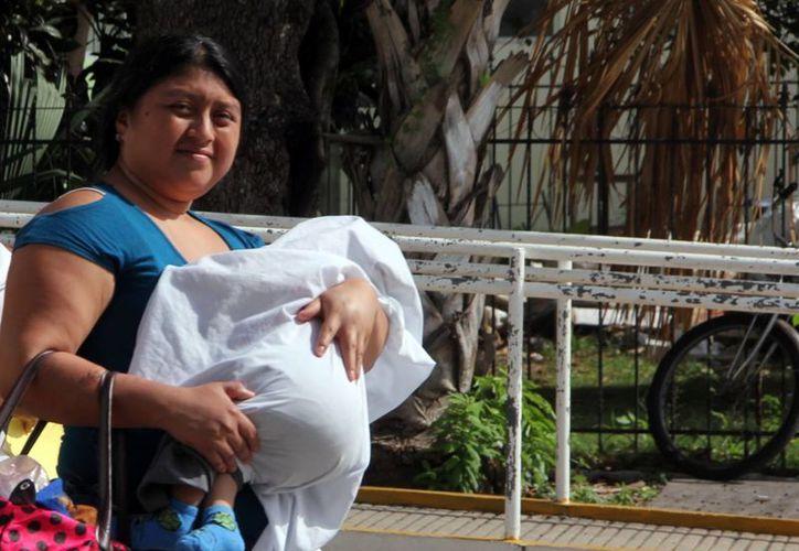Las autoridades de salud exhortan a cuidar del calor sobre todo a los niños y bebés. (Milenio Novedades)