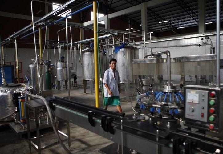 Un hombre camina por la planta industrial Ebococa en Villa Tunari, Bolivia. (Agencias)