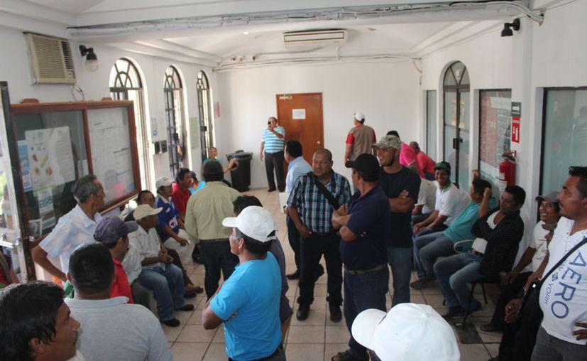 Un nutrido grupo de productores de piña se manifestaron ayer a las puertas de la Sedarpe, en Chetumal, para exigir el pago de apoyos económicos atrasados. (Daniel Tejada/SIPSE)