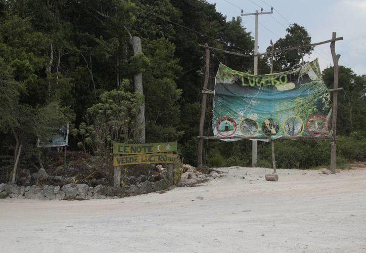 La Ruta de los Cenotes busca atraer a más turistas que gustan experiencias ecológicas. (Tomás Álvarez/SIPSE)
