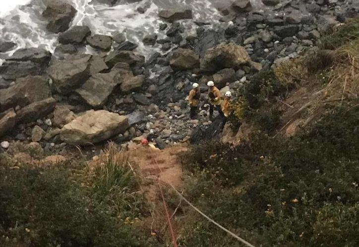 Una mujer estadounidense que cayó con su auto por un barranco fue encontrada con vida una semana después. (Foto: Facebook)