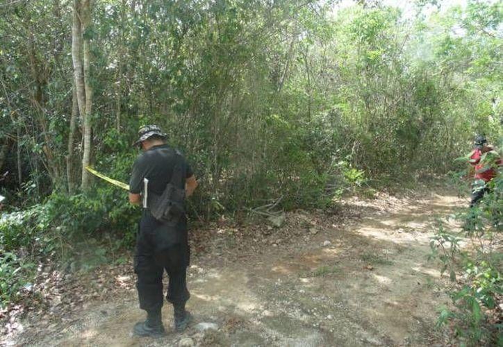 El cuerpo fue hallado cerca de la carretera federal Cafetal-Mahahual. (Redacción/SIPSE)
