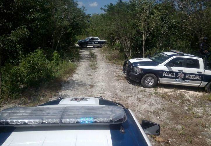 El cuerpo fue encontrado en el área verde de la colonia La Libertad. (Eric Galindo/SIPSE)