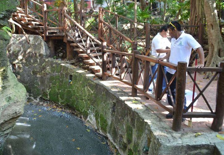Las autoridades municipales buscarán una solución al problema de contaminación de cenotes. (Yenny Gaona/SIPSE)