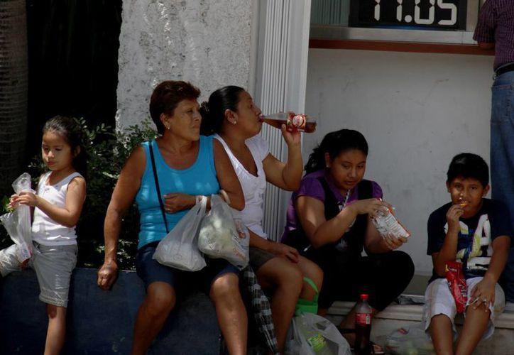 Los menores se alimentan con mayor frecuencia con comida chatarra durante las vacaciones. (Consuelo Javier/SIPSE)