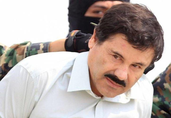 """Joaquín """"El Chapo"""" Guzmán Loera fue capturado en febrero. (Archivo/EFE)"""