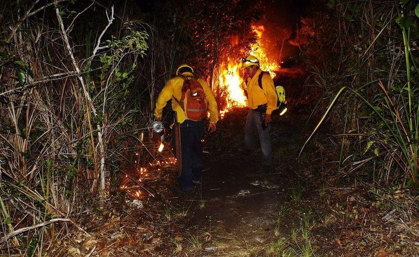 Buscarán fortalecer brigada voluntaria contra incendios. (Edgardo Rodríguez/ SIPSE)