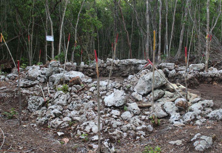 Especialistas marcarán las áreas de conservación en la parcela. (Daniel Pacheco/SIPSE)