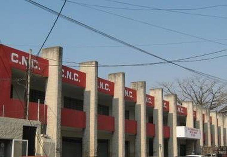 La CNC Yucatán espera ampliar su asesoría jurídica en los 106 municipios. (Milenio Novedades)