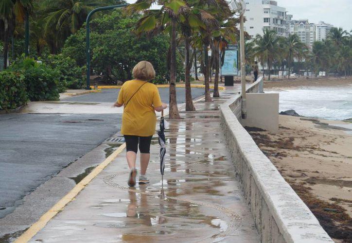 La tormenta tropical 'Erika' se ubicaba a unos 140 kilómetros al oeste de Guadalupe y se movía hacia el oeste a 26 kilómetros por hora. (Archivo/EFE)