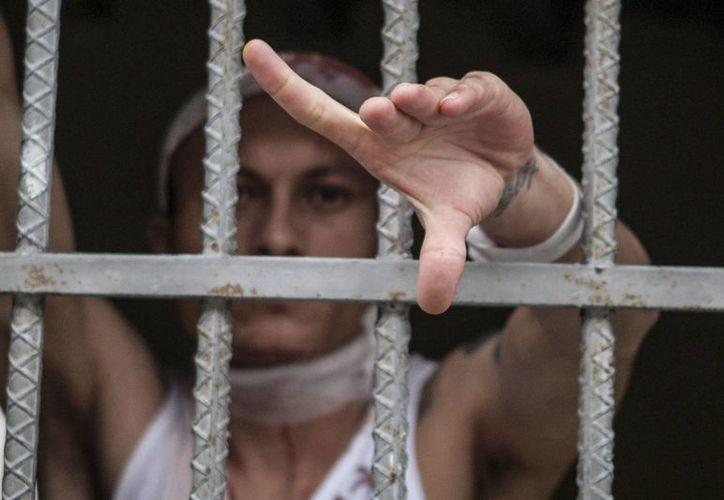Pandillero de la Mara 18 herido. Está en una celda en el Hospital Escuela en Tegucigalpa, donde es atendido. (EFE/Archivo)