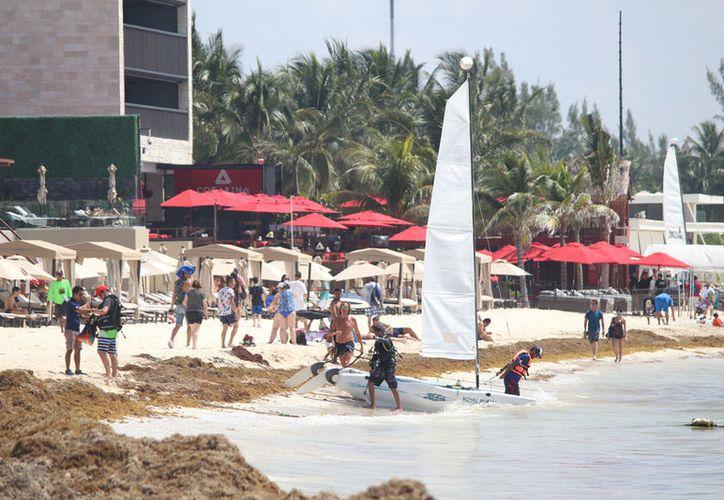 Los puntos de mayor afectación del sargazo, se han ubicado a la altura de Playa Mamitas.(Redacción/SIPSE)