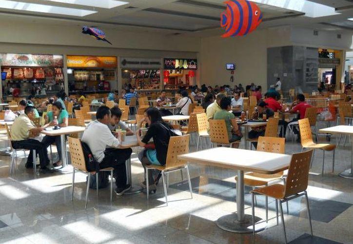 Serán revisados 17 restaurantes ubicados en la zona costera de Majahual, 26 de Bacalar, 14 en Laguna Milagros y 400 de Chetumal. (Juan Palma/SIPSE)
