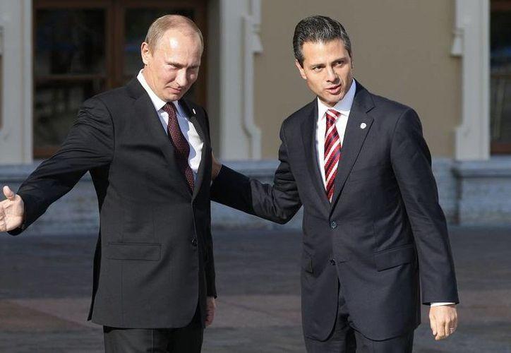 Vladimir Putin se reunió brevemente con el presidente Enrique Peña Nieto para darle la bienvenida. (Agencias)