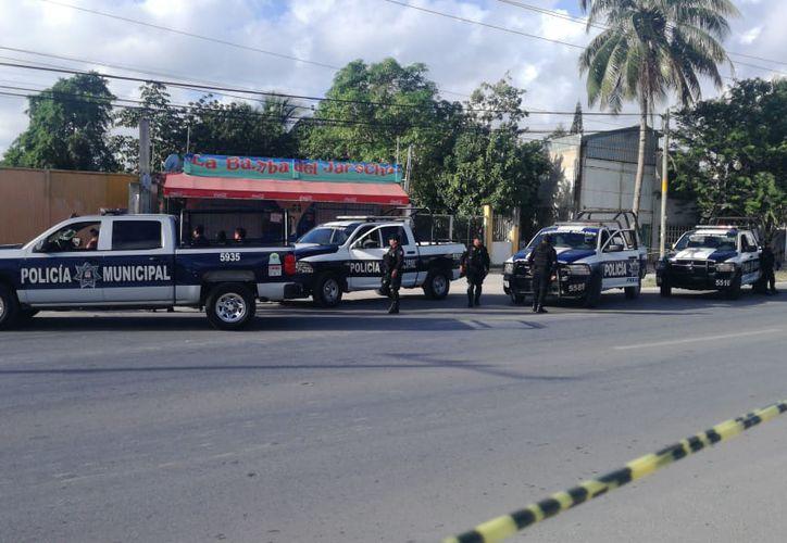 Los cadáveres descuartizados fueron hallados a la altura del kilómetro 307 de la avenida José López Portillo. (Redacción/SIPSE)