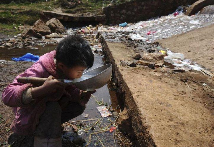 La escasez de agua, la competencia por los alimentos y la energía seguirán preocupando a los altos cargos del Gobierno estadounidense y del extranjero. (Archivo/Reuters)
