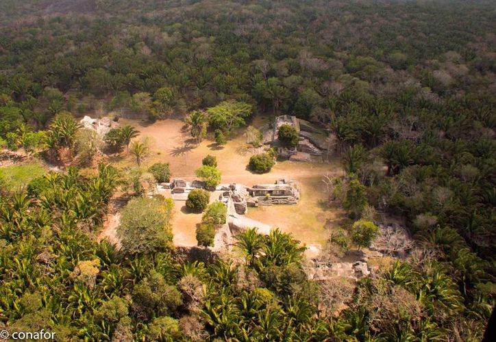 En lo que va del año, en Quintana Roo se han registrado 25 incendios, de los cuales, cinco se encuentran activos, mientras que el resto ya fue liquidado en su totalidad.