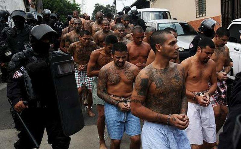 Capturan en Estados Unidos a 214 pandilleros de la MS