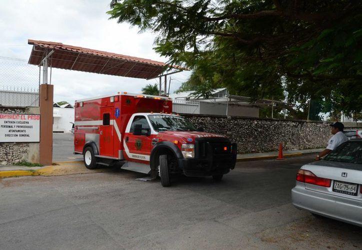 Personal de la dirección de Siniestros y Rescate intervino en el ataque de abejas africanizadas en el Colegio Rogers Hall. (Cuauhtémoc Moreno/SIPSE)