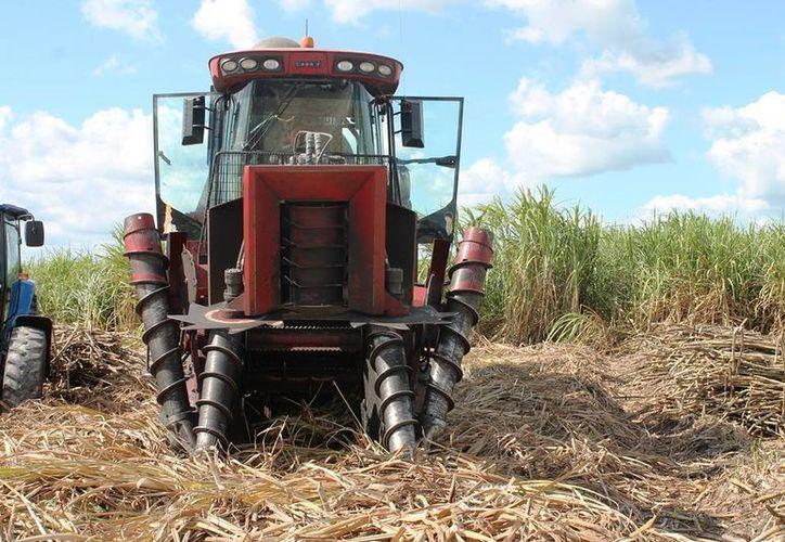 Las cosechadoras han incrementado su precio y actualmente se cotizan de entre seis y siete millones de pesos. (Edgardo Rodríguez/SIPSE)