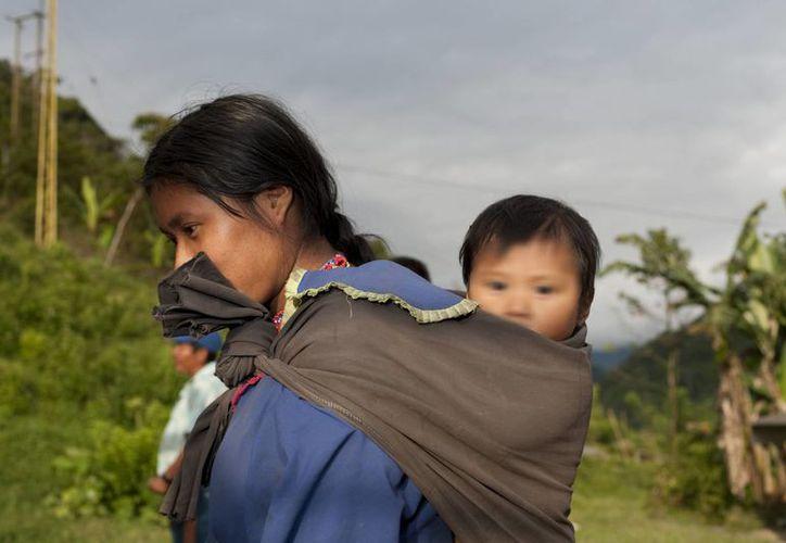 En Juchitán, Oaxaca, así como en otras regiones donde hay gran población indígena, la venta de niñas es común. Imagen de contexto. (mexicampo.com.mx)