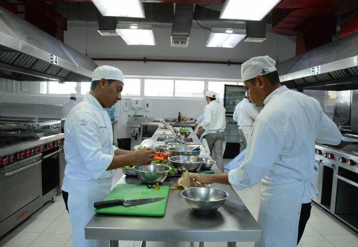 La carrera de gastronomía ofrece un amplio abanico de opciones. (Victoria González/SIPSE)