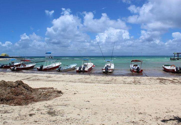 La Cofepris emitirá el resultado de sus análisis del agua de mar de la Riviera Maya este fin de semana. (Octavio Martínez/SIPSE)