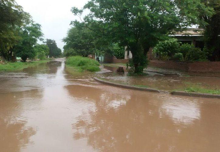 El mal estado de las calles provoca encharcamientos considerables, que las hace intransitables. (Carlos Castillo/SIPSE)