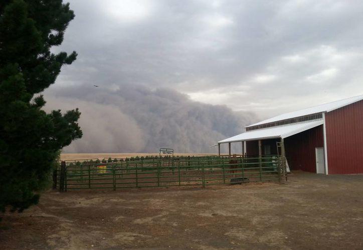 Una espectacular tormenta de polvo se mueve hacia un granero cerca de Harrington, Washington, el martes 12 de agosto de 2014. (Foto AP/Lacey Hirst)