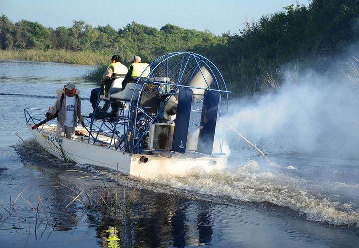 El larvicida será rociado a lo largo de 90 hectáreas de la ribera del río Hondo. (Redacción/SIPSE)