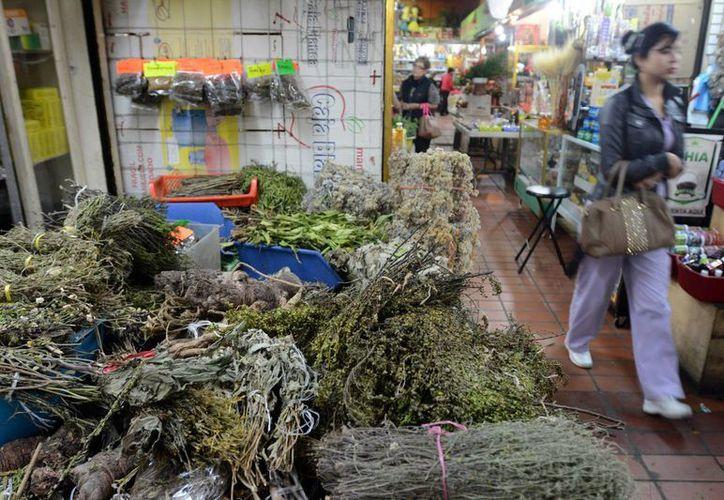 Algunas zonas del país preservan la tradición de recurrir a plantas medicinales como método alternativo, con la esperanza de curar alguna enfermedad. (Archivo/Notimex)