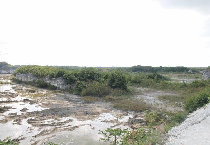 El terreno donde se construirá el centro de exhibición. (Israel Leal/SIPSE)
