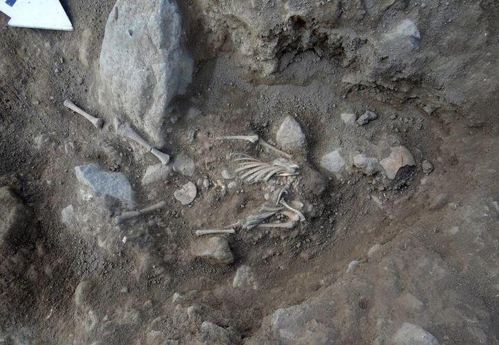 En un espacio reutilizado con fines funerarios se encontraron ocho osamentas de personas en posición fetal. (Notimex)