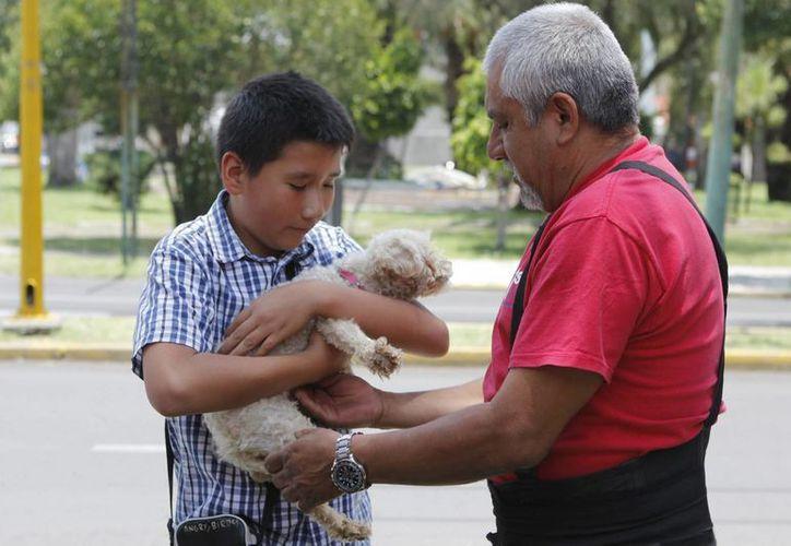 La Brigada de Vigilancia Animal  exhorta a los ciudadanos a adoptar una mascota y no a comprarla. (Archivo/Notimex)