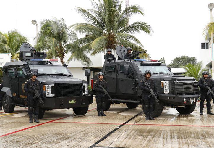 Los apoyos en armamento y capacitación son constantes, y en ocasiones se cuenta con expertos internacionales.