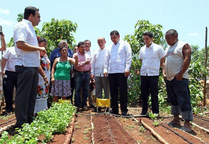 Tahdziú es uno de los dos municipios de Yucatán donde se aplicará la Cruzada contra el Hambre. (SIPSE)