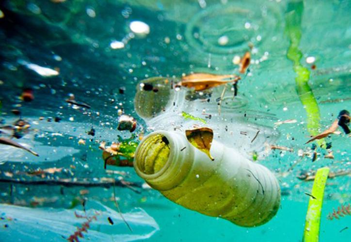 En este momento ya estamos en la 'era plástica' advierte un investigador de la Universidad de Hull. (jovenesconstruyendo.org)