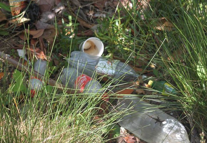 Esperan que con estas acciones disminuya la cantidad de basura arrojada a la Bahía del Manatí. (Harold Alcocer/SIPSE)