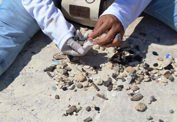 En dos arenales de Playa del Carmen recolectaron cerca de cinco kilogramos de colillas de cigarros. (Foto: Octavio Martínez)