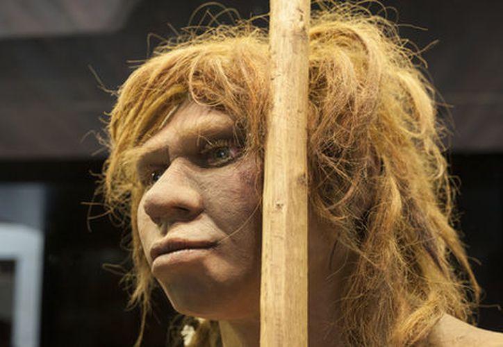 Investigadores estudian un fémur perteneció a un hombre de Neandertal que vivió hace unos 124 mil años. (Milenio.com)